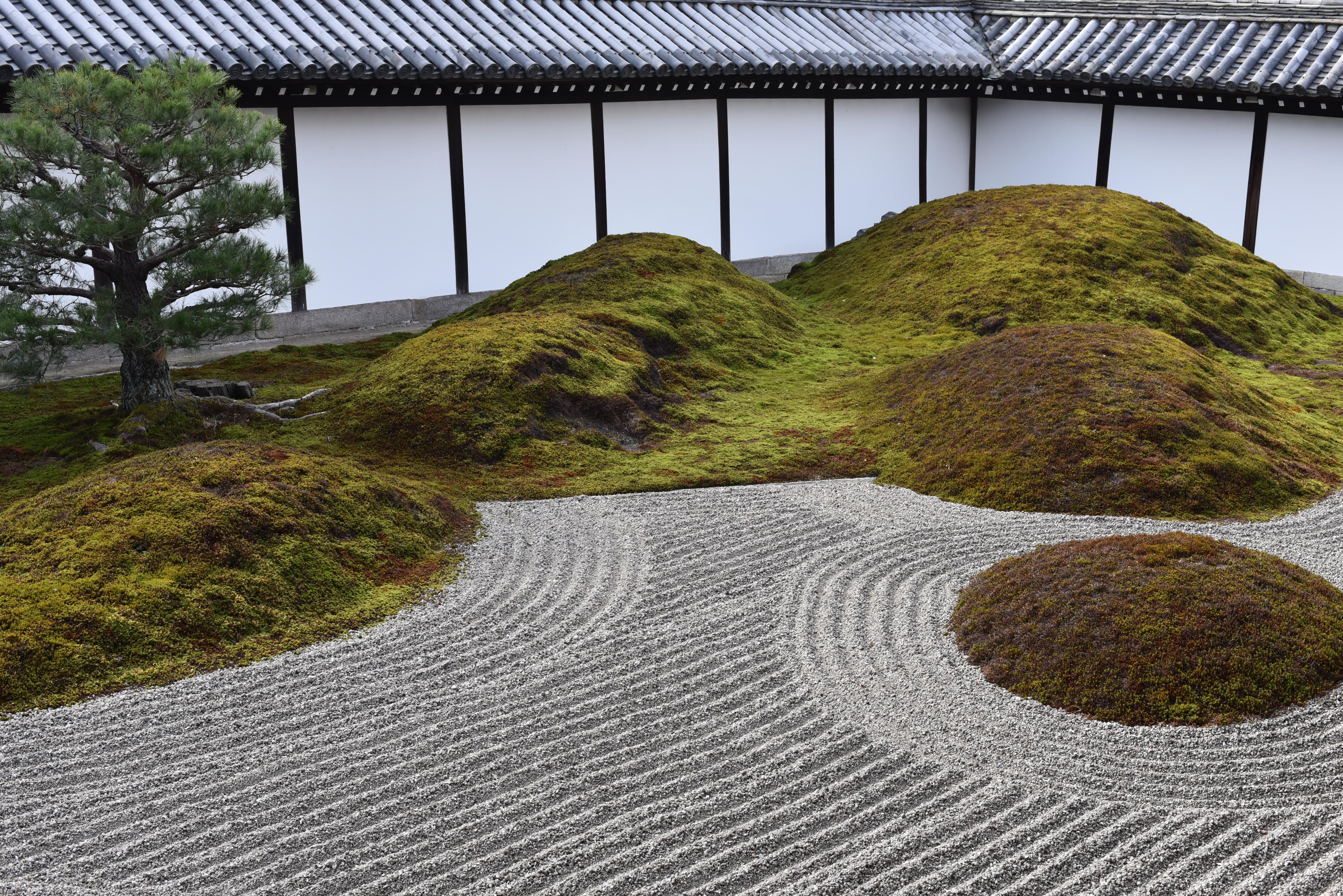 東福寺 庭
